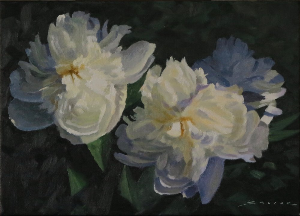 "White Peonies in Shade          10"" x 14"" oil"