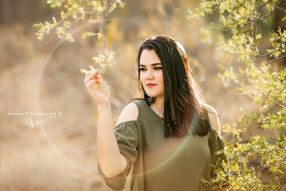 senior pictures grad sandra day o'connor maountain ridge high school phoenix glendale peoria arizona anjeanette photography az