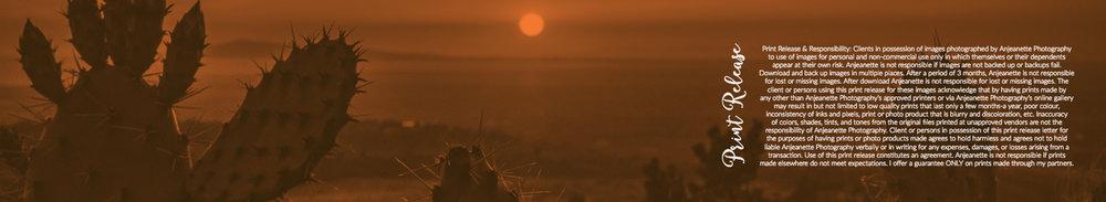 anjeanette photography phoenix scottsdale peoria arizona