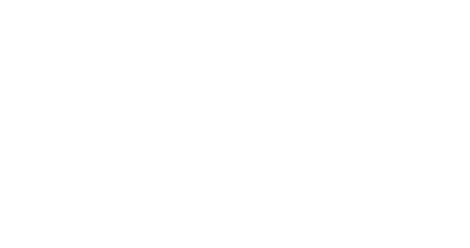 Diesel-Alrite-Logo-white.png