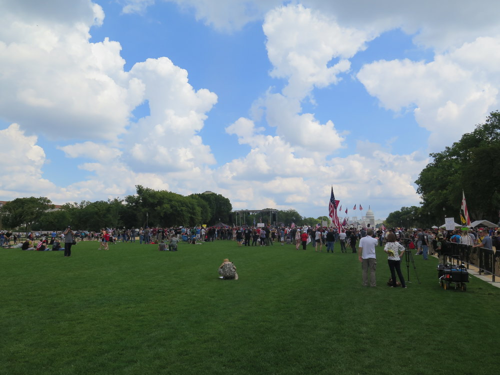 """The Revolution Will Not Be Attended."" Mother of All Rallies, Saturday, September 16th, 2017, National Mall, Washington, D.C."