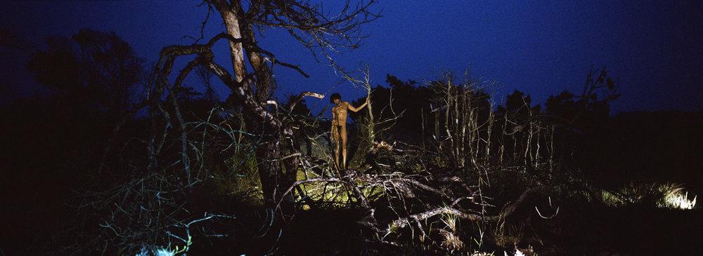 31_Fire Island Night_Leifheit_Deli.jpg