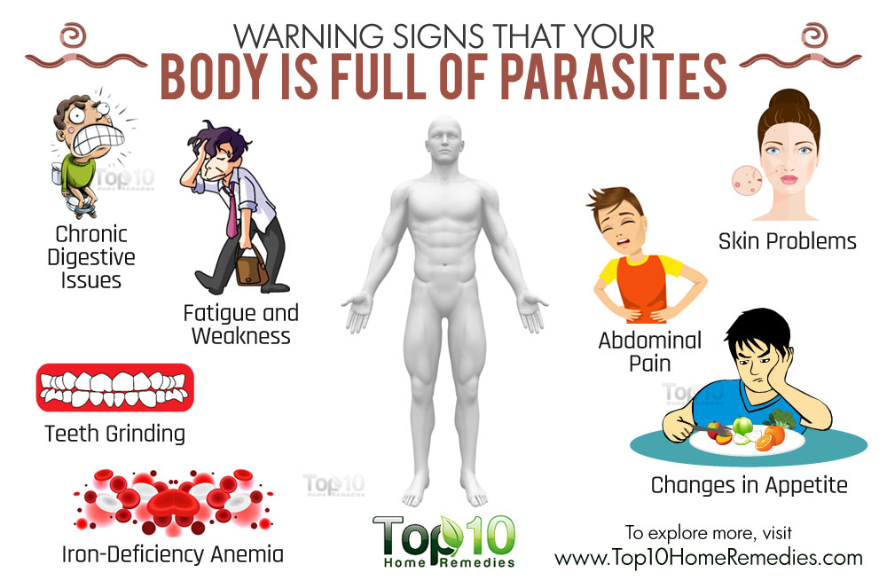 body-full-of-parasites-n.jpg
