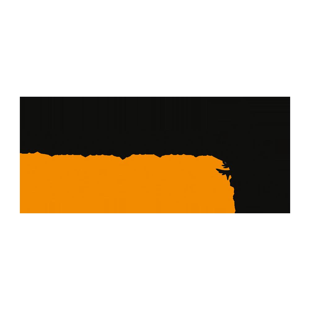 logo_berger_dominik.png
