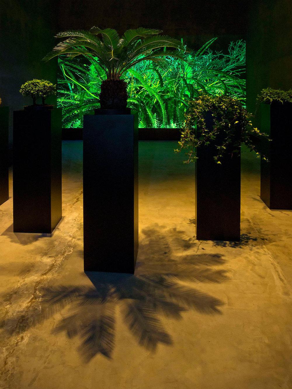 Sommerer-Mignonneau-Interactive-Plant-Growing-1992-1-web.jpg