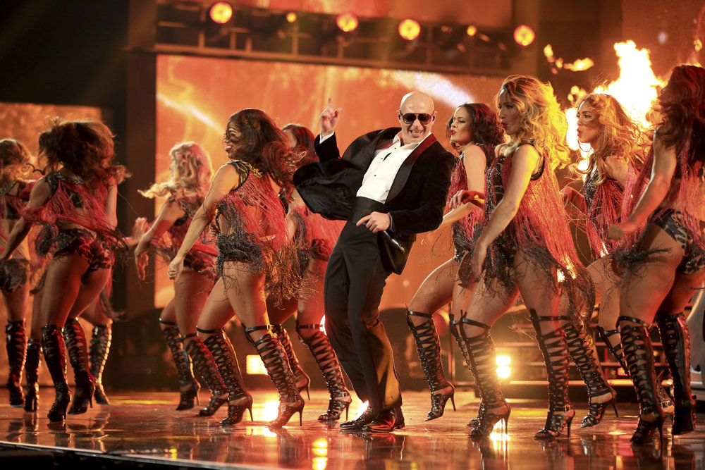 Pitbull Performance_459485848.jpg