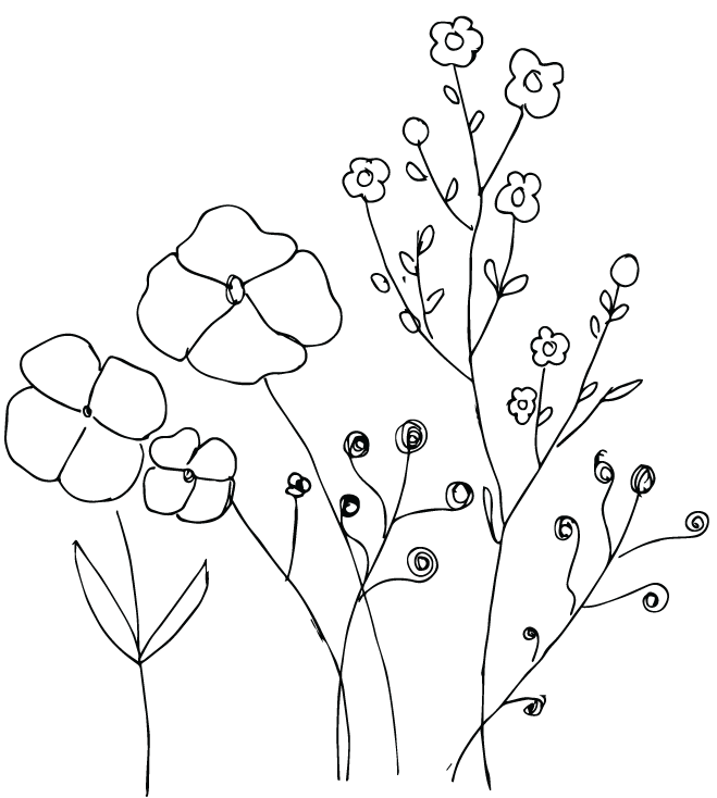 vector-flowers_1.png