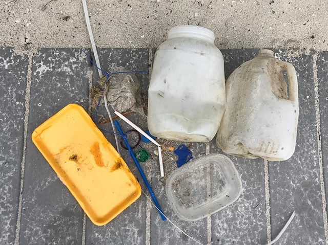 Please help us keep our beaches clean! Always properly dispose of waste and when possible, lend a hand by picking up litter. All plastic pictured was collected from the bayside.