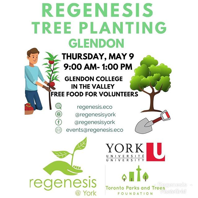 Join Regenesis as we plant trees at York University GLENDON Campus (at the Valley) on Thursday, May 9 from 9:00 AM- 1:00 PM. Meet the group at the Centre of Excellence and we will walk over together.  Do you want to see your York campus transformed into a tree heaven? Join us as we plant more trees to add York's collection!  Would you want to leave your mark at York (Glendon Campus)? Well, plant a tree and watch it grow over the years!  FREE FOOD will be provided for volunteers!  Please sign up for volunteer shifts at https://forms.gle/CvJA9NgSut2tna7H8 Or email us at events@regenesis.eco with your availability.  If you are coming from York University KEELE Campus please see Glendon Shuttle Schedule here: http://transportation.info.yorku.ca/shuttle-services/glendon-keele-summer-schedule/ #tree #treeplanting #sustainability #trees #event #volunteer #glendon #glendoncampus #treeoflife #tree_captures #tree_lovers #treehugger #treestagram #plants #gardening #glendoncampus #yorku #yorkuniversitycampus #univeristy #regenesis #enviornment #environmentalist #volunteering #volunteerwork #volunteeropportunities