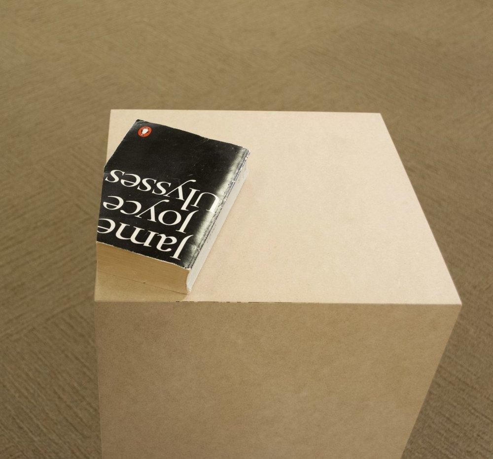 "Dora Garcia. ""Ulysses,"" since 1999. Trimmed book, unlimited edition."