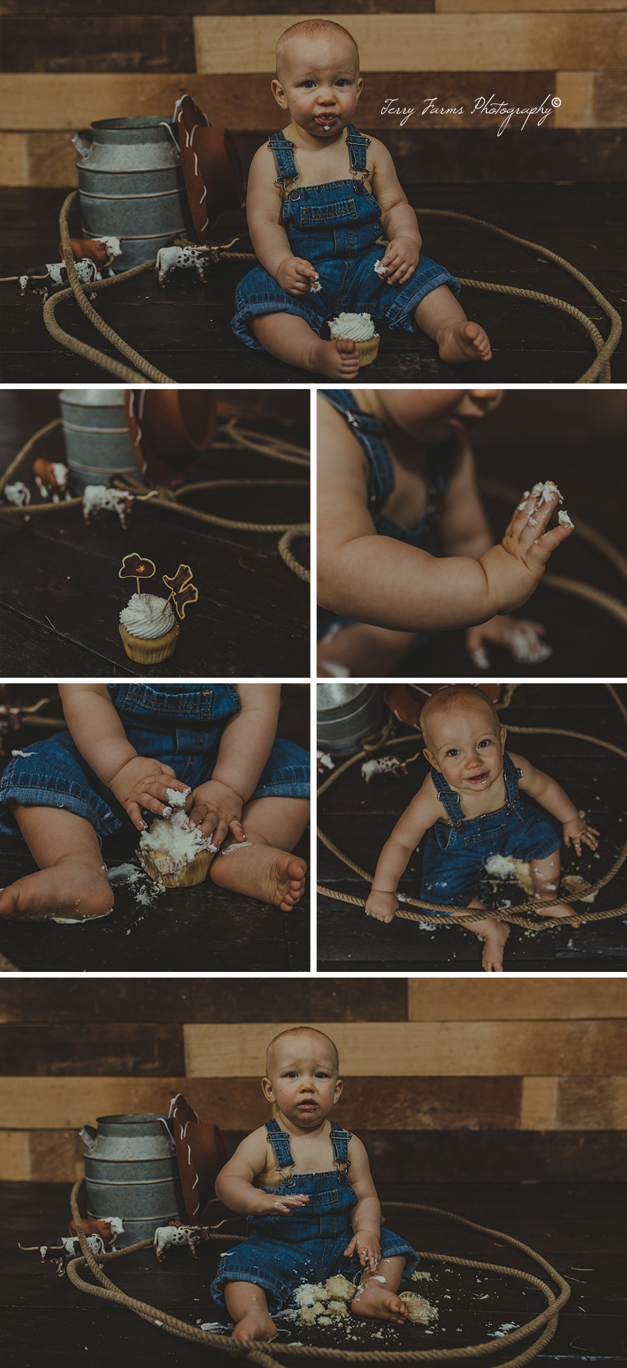 Cowboy one year photo shoot & cake smash