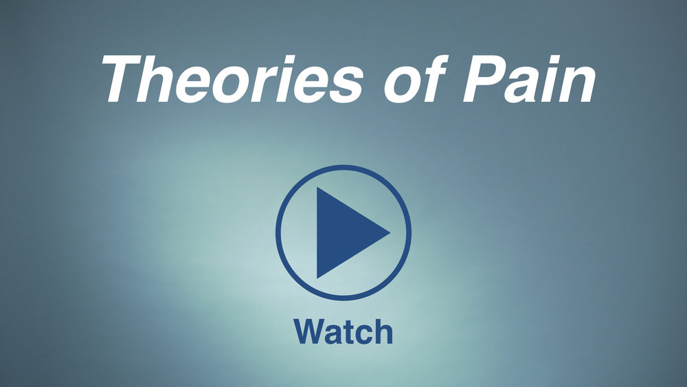 Watch the video regarding theories of chronic pain.