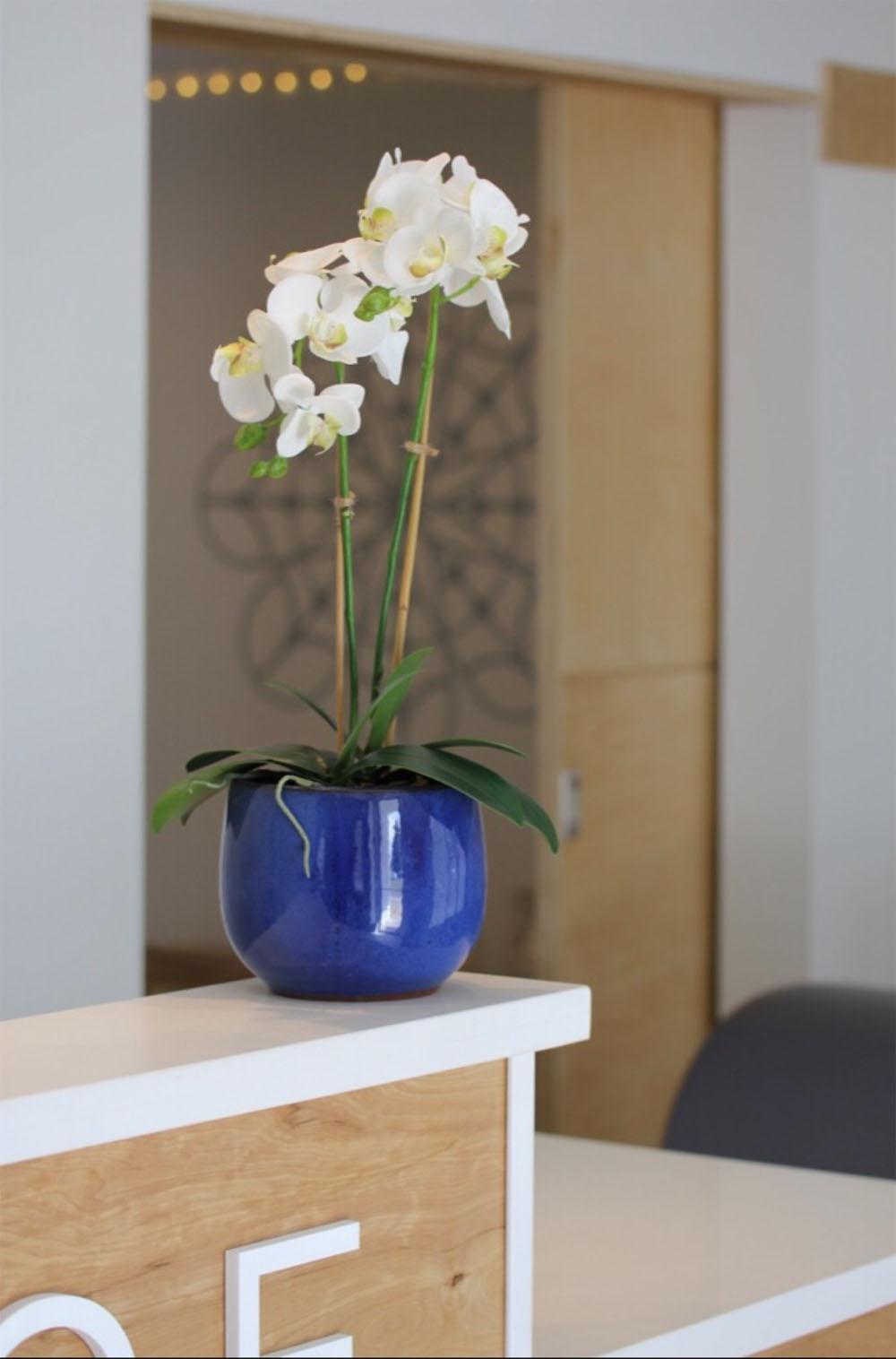 Valerie-Legras-Commercial-Design5.jpg