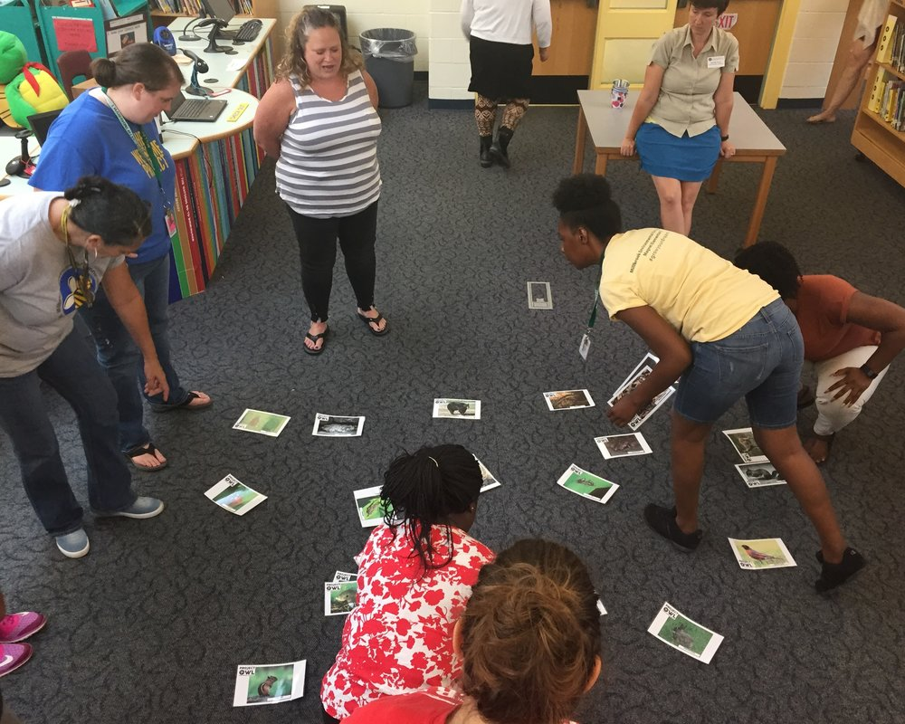 "MECME teachers engage in the ""What Am I?"" classification activity.  Photo courtesy of Sean Russell, MECME"