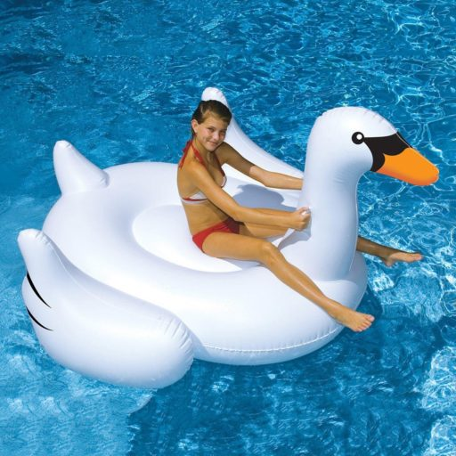 Team Cone will launch the Swan Flotilla sometime this summer. You have been warned.