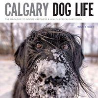 Calgary Dog Life.jpg