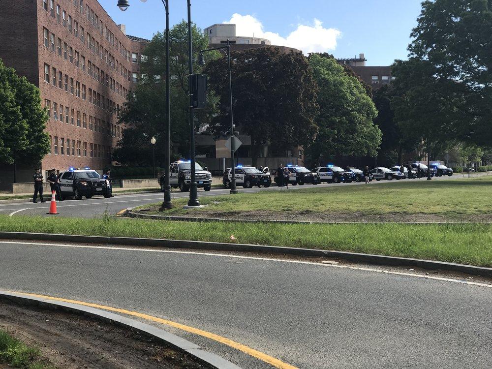 Police car lineup.JPG
