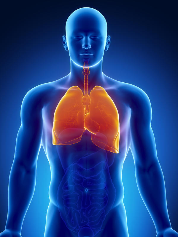 mesothelioma plueral lungs