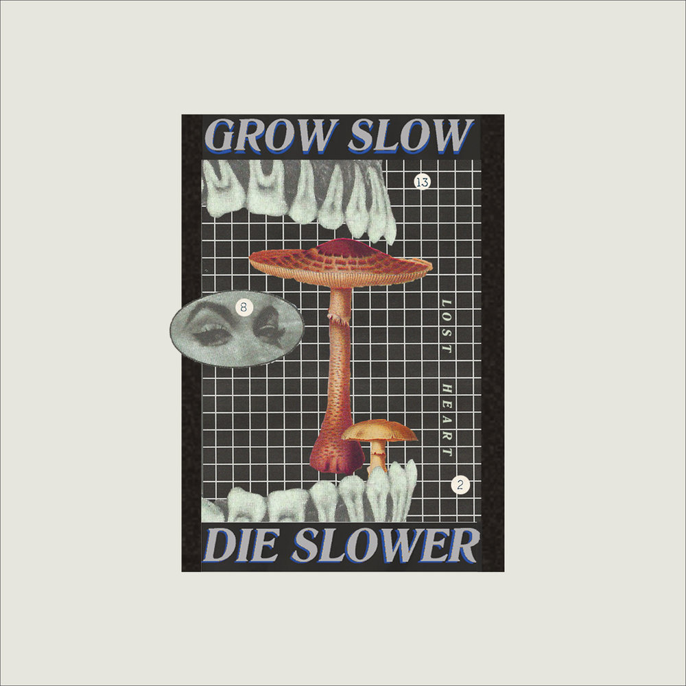 FA18_IG_1920px_x_1920px_LOST_GROW_SLOW_ART_PHONE_.jpg