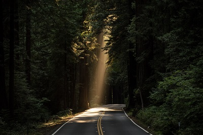 unsplash light on road.jpg