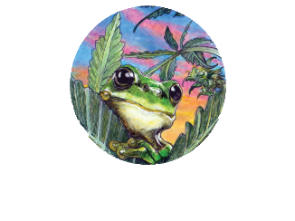 Reach_For_The_Frog.png