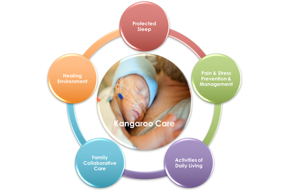 The 5-Core Measures of Age Appropriate Care address Quality & Patient Safety, The Environment of Care, and Patient and Family Centered Care Priorities and Best Practices