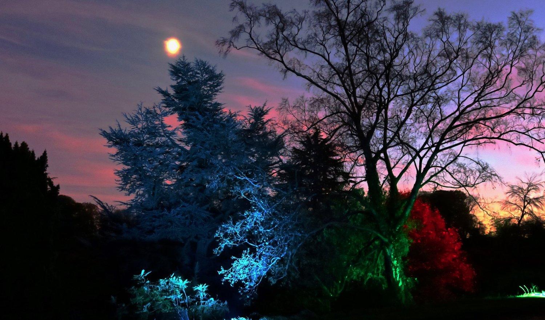 Gallery 2 lighting designs u2014 whiteway workshop