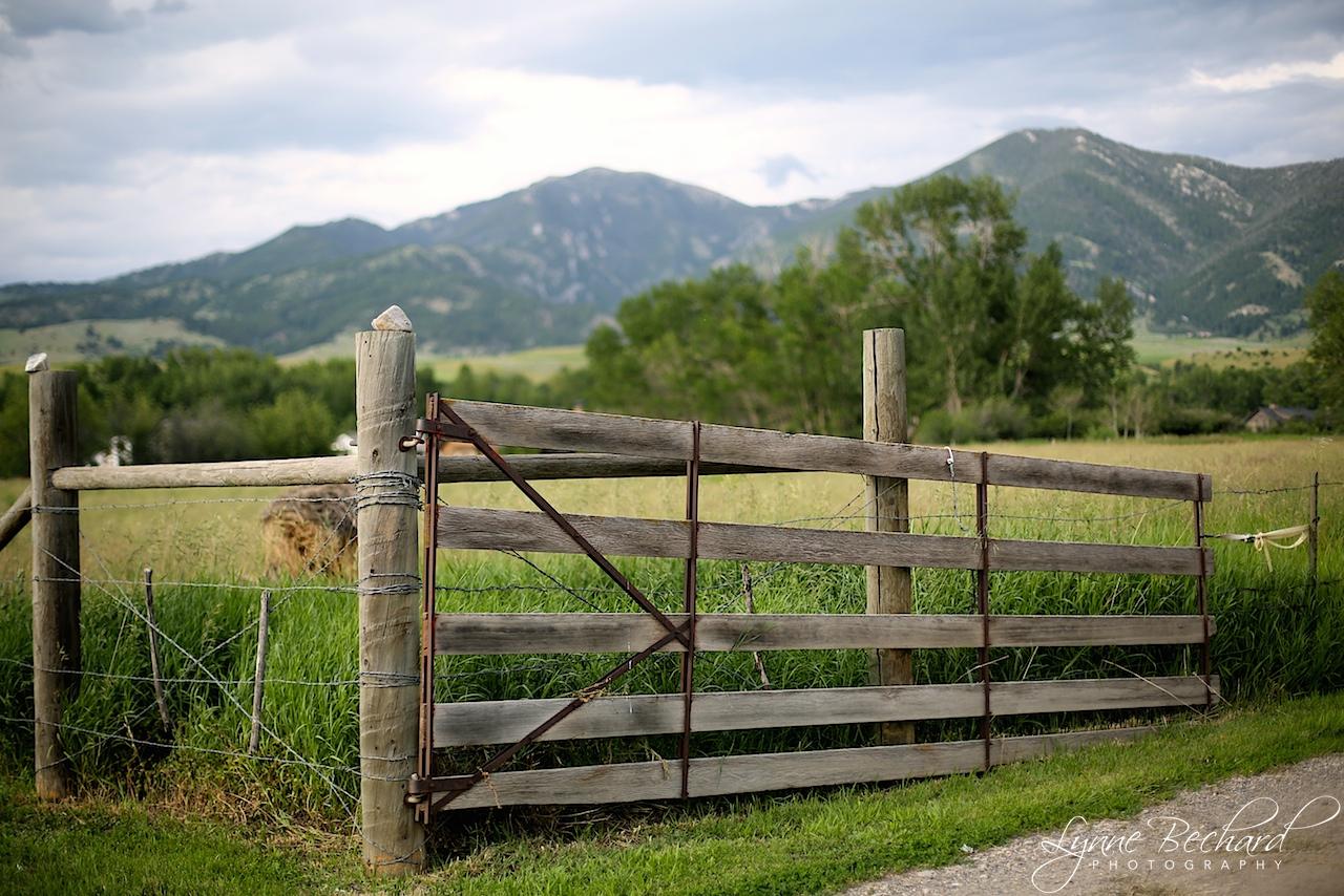 gate Bozeman