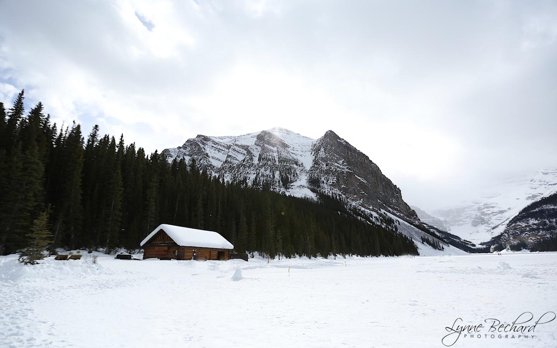 ice castle (3)