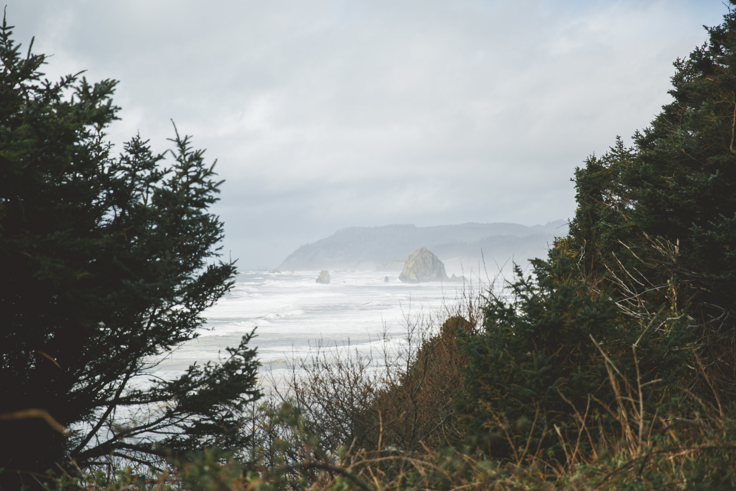 oregon coast-4