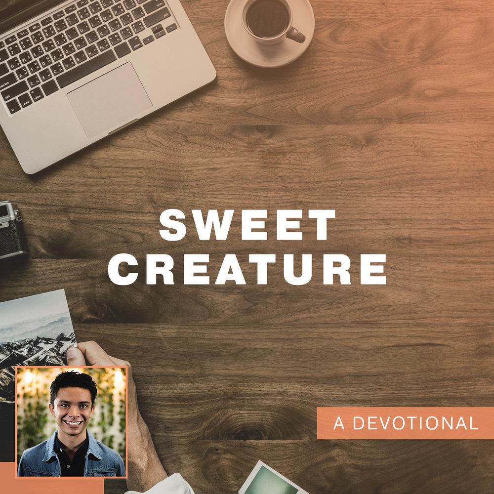 Sweet Creature.jpg