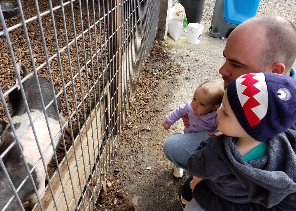 baby animals at cross e ranch