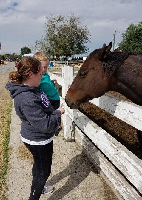 fun family activities in Davis County