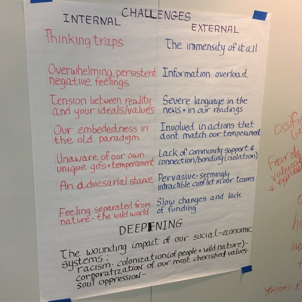 "A few of the challenges Inner Transition practitioners face, pointed out by Rebecca Blanco during her popular ""Deep Resilience"" intensive. Photo by Nils Palsson."