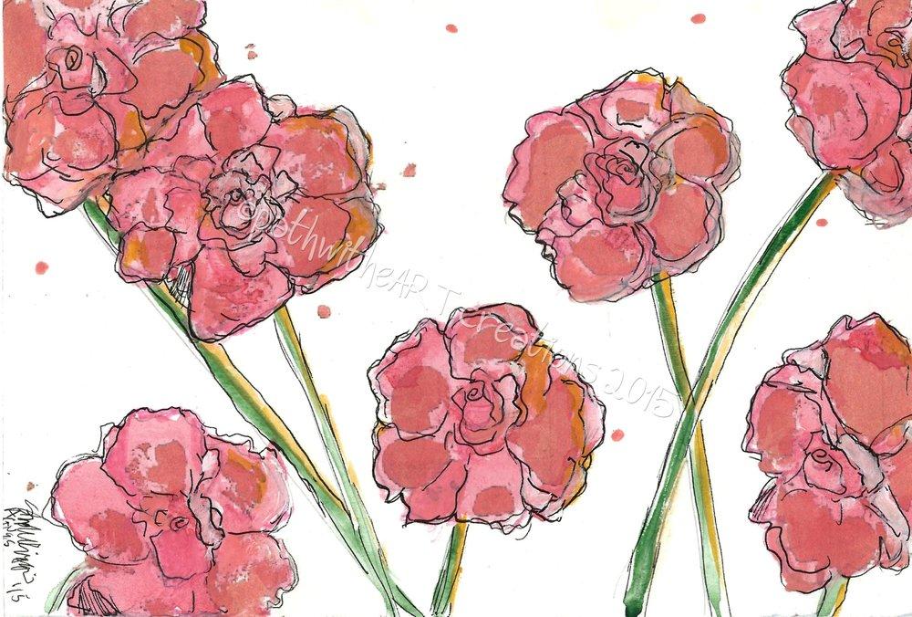 Agnes flowers