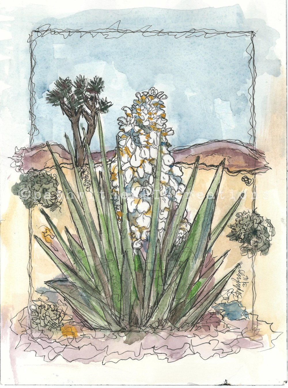 Pale Yucca