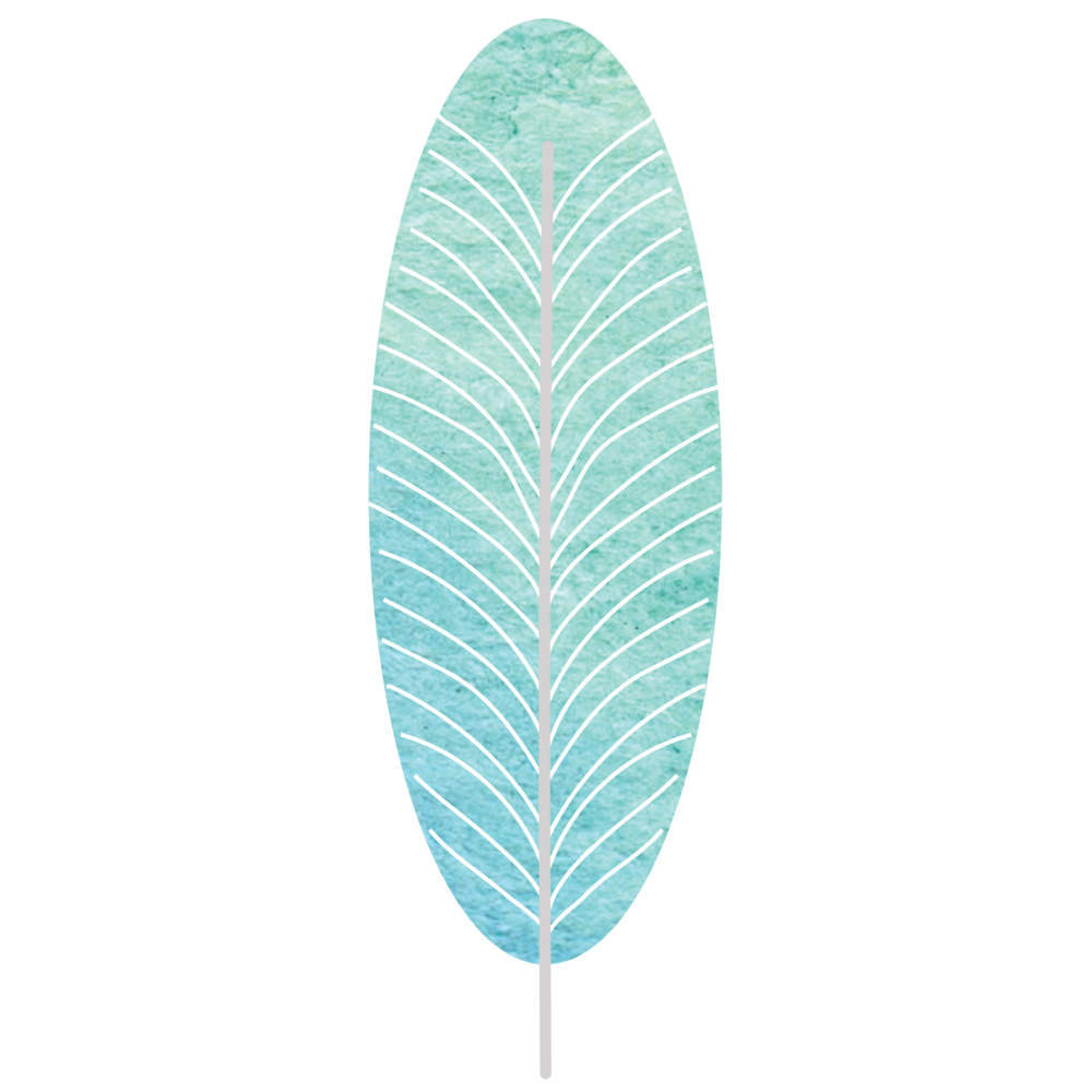 Graphics_Feather Teal Watercolor.png