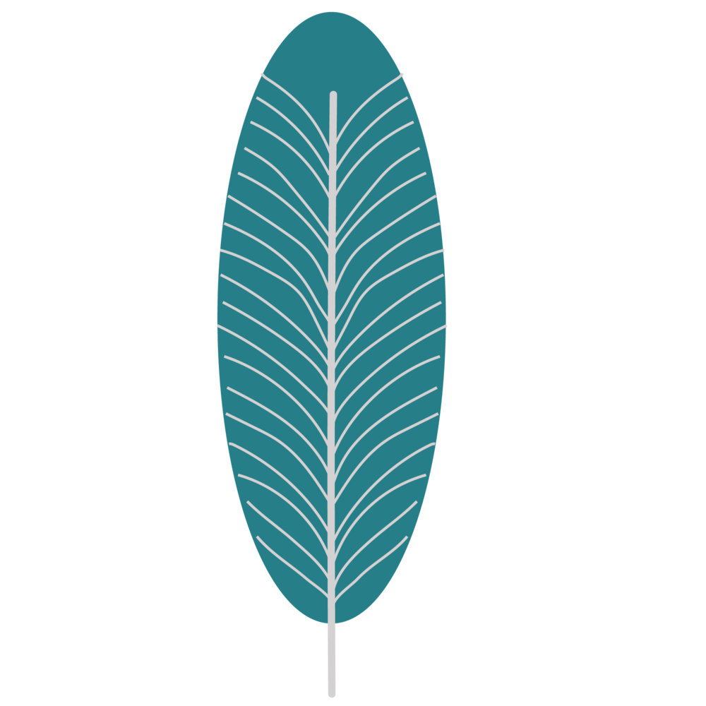 Graphics_Feather Teal.png