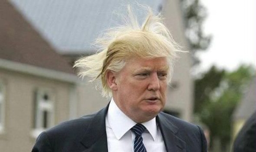 President Donald Trump wind fuck head