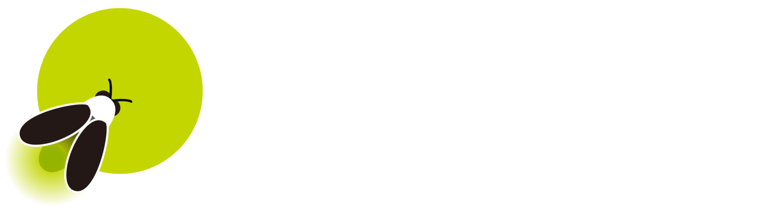 Fireflyers International Network