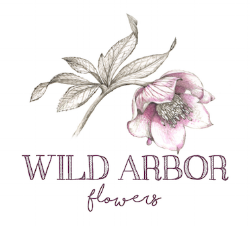 wild arbor flowers logo 3.png