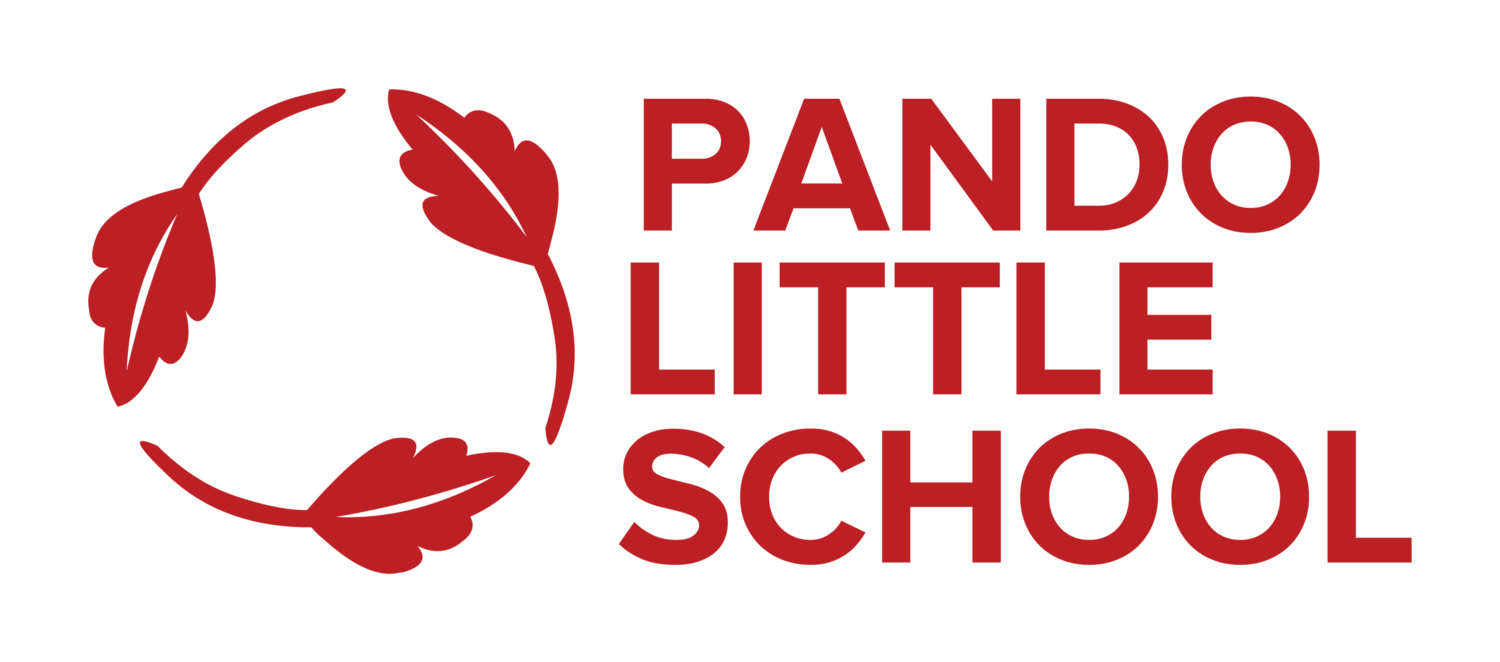 Pando Little School