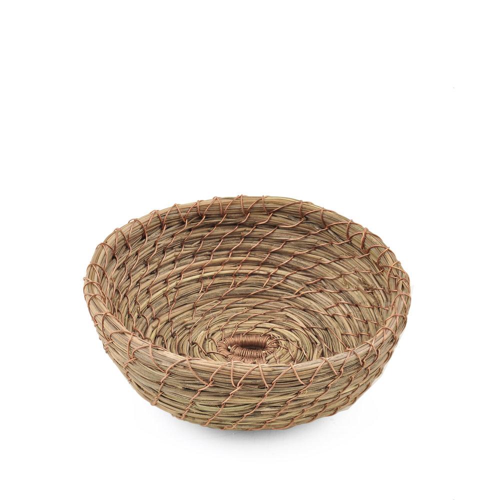 Basket Study 1