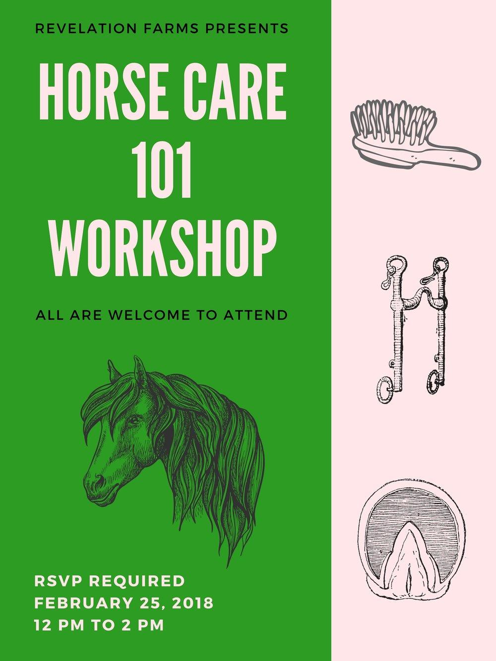 horsecare101.jpg