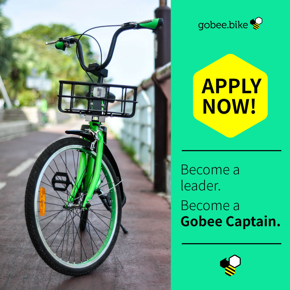 Gobee-Captain.jpg