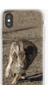 For cool cell phone cases run over to our RedBubble site!! -