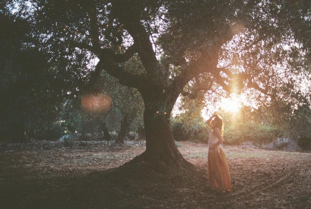 Photography by Sarah Kathleen
