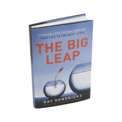 The Big Leap book