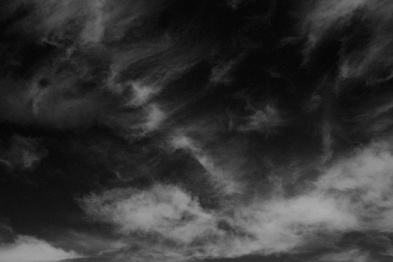 skyweb1.jpg
