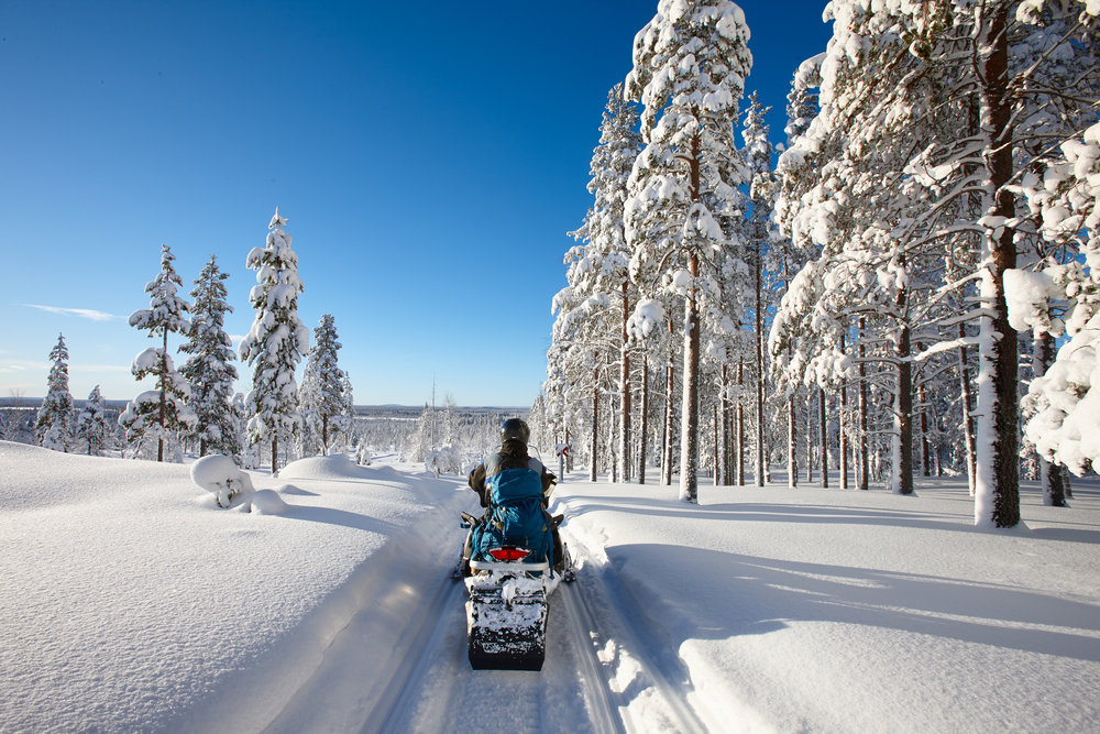 Snowmobile Tour -